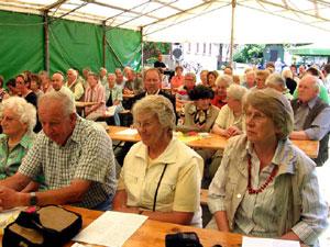 2010-06-26_brunnenfest_01
