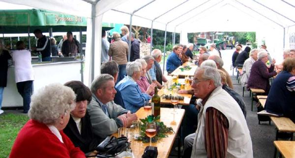 2011-06-25_brunnenfest_05